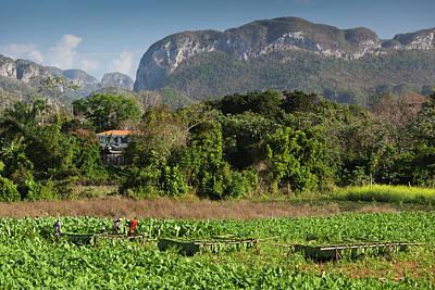 Del Rio Photograph - Cuba, Pinar Del Rio Province, Vinales by Walter Bibikow
