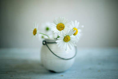 Vase Table Photograph - Daisy Flowers by Nailia Schwarz