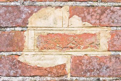 Damaged Wall Art Print by Tom Gowanlock