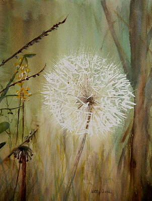 Dandelion Art Print by Betty-Anne McDonald