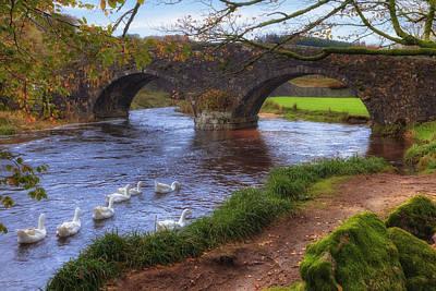 Upland Photograph - Dartmoor - Two Bridges by Joana Kruse