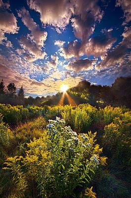 Vines Photograph - Daybreak by Phil Koch
