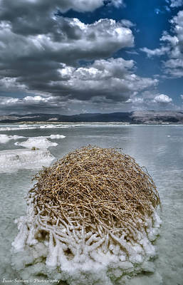 Dead Sea Monuments Of Nature  Art Print by Isaac Silman