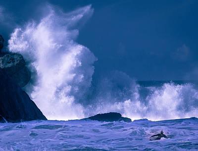 Photograph - Decision......  Morro Bay by Tim Bryan