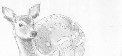 Drawing - Deer Sketch by Mike Jory