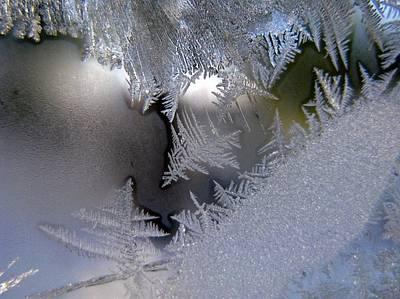Photograph - Delicate Ice by Rhonda Barrett