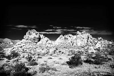 Photograph - Desert Oasis by John Rizzuto