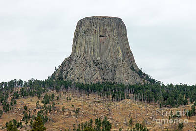 Photograph - Devils Tower National Monument by Fred Stearns
