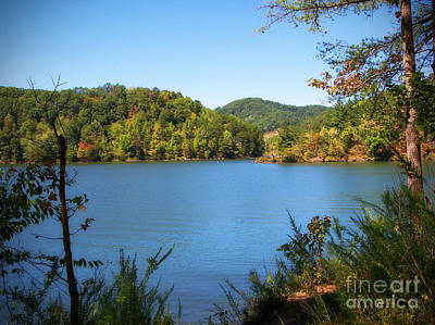 Photograph - Dewey Lake by Lena Auxier