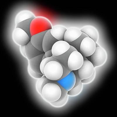 Dextromethorphan Drug Molecule Art Print by Laguna Design