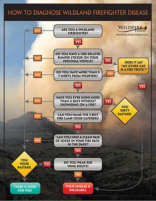 Print featuring the photograph Diagnosing Wildland Firefighter Disease by Bill Gabbert