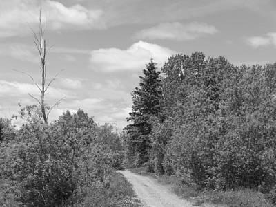 Dirt Road Original