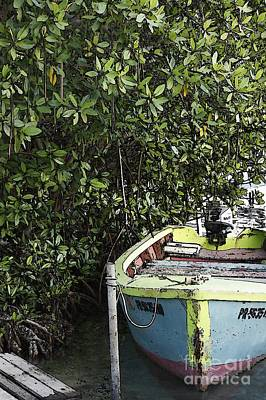 Art Print featuring the photograph Docked By The Mangrove Trees by Lilliana Mendez