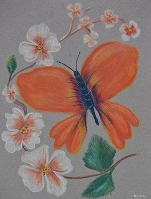 Pastel - Dogwood Butterfly by Maria Urso