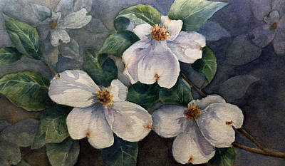 Painting - Dogwood by Cynthia Roudebush