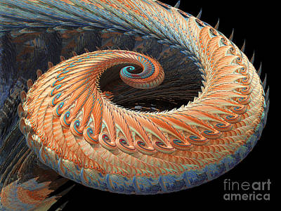 Photograph - Dragon Tail Fractal by Laguna Design