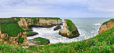 Ocean Vista Photograph - Dramatic Panoramic View Of Shark Fin Cove by Jamie Pham