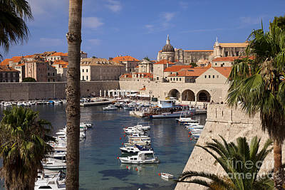 Photograph - Dubrovnik Harbor by Brian Jannsen