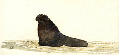 North Sea Painting - Elephant Seal by Juan  Bosco