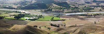 Hawkes Bay Photograph - Elevated View Of Vineyard by Panoramic Images