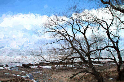 Erie Shore In Winter Original
