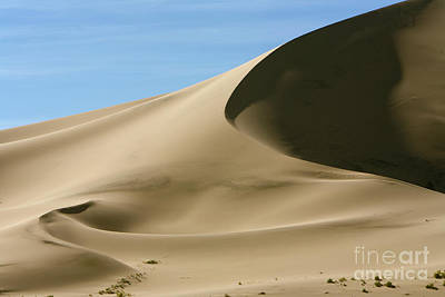 Photograph - Eureka Dunes Death Valley Natl Park by Yva Momatiuk John Eastcott