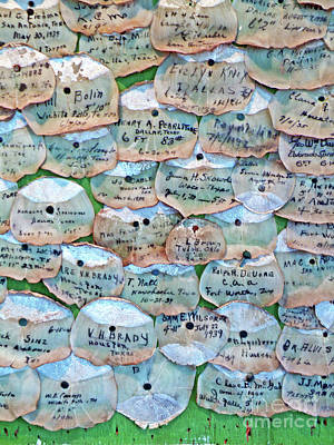 Salt Water Game Fish Photograph - Extinction Wall by Joe Jake Pratt