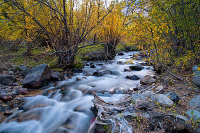 Rivers Photograph - Fall At Big Pine Creek by Cat Connor