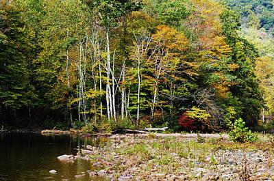 Fall Color River Art Print by Thomas R Fletcher