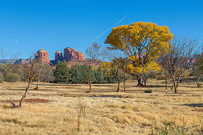 Fall Field On Cathedral Rock Art Print by Scott Campbell