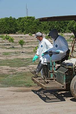 Farm Workers Applying Pesticide Print by Jim West
