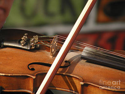 Photograph - Fiddle Time by George DeLisle