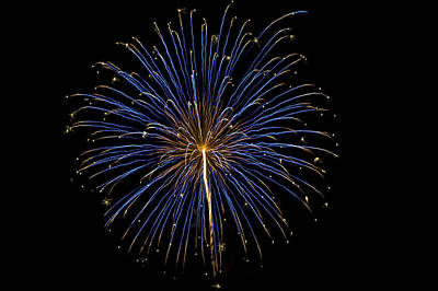 Photograph - Fireworks Bursts Colors And Shapes by SC Heffner