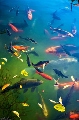 Digital Art - Fish Pond by Thomas Hall