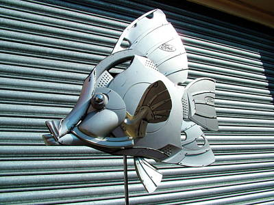 Hubcap Wall Art - Photograph - Fish Sculptures by Www.hubcapcreatures.com/science Photo Library