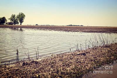 Vintage Pink Cadillac - Flooded farmland by Leslie Banks