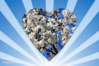 Sun Rays Digital Art - Floral Heart by Augusta Stylianou
