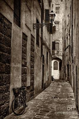 Photograph - Florentine Street by Nicola Fiscarelli