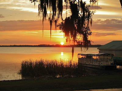 Photograph - Florida Sunset by Denise Mazzocco