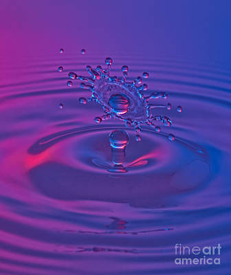 High Speed Photograph - Fluid Art by Susan Candelario