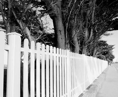 Follow The Fence Art Print by Julie Palencia