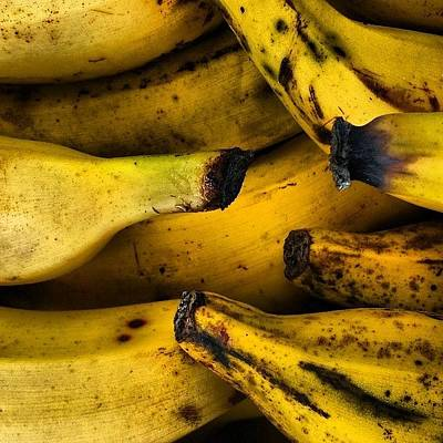 Yummy Photograph - Bananas by Jason Michael Roust