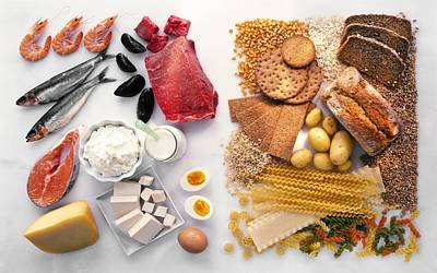 Food Groups Art Print by Science Photo Library