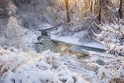 Snowy Brook Photograph - Forest Creek After Winter Storm by Elena Elisseeva