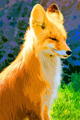 Photograph - Fox by Carol McCarty