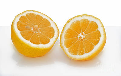 Photograph - Fresh Lemon Cut In Half  by Valerie Garner