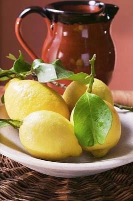 Water Jug Photograph - Fresh Lemons With Leaves On Plate In Front Of Terracotta Jug by Foodcollection