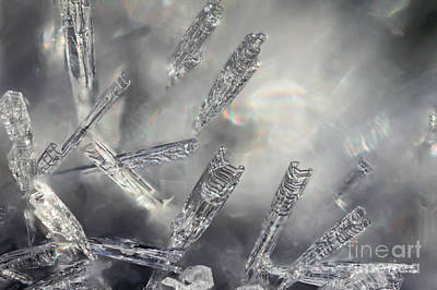 Photograph - Frost Crystals by Marianne Jensen