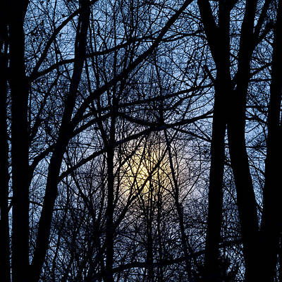 Photograph - Frosted Winter Moon by Alan L Graham