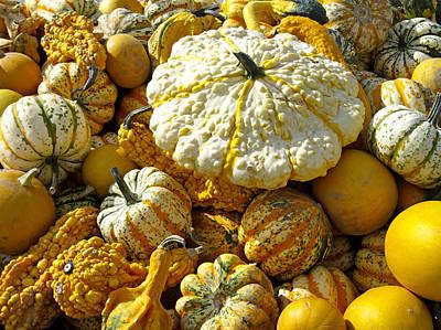 Frucht, Fruechte, Herbst, Kuerbis Print by Tips Images